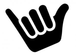 Shaka icon